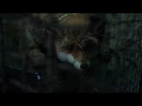 SPOOR (Pokot) by Agnieszka Holland - Trailer