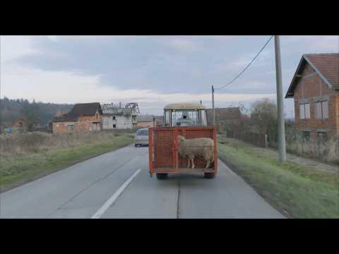 UNTITLED - Offizieller Trailer