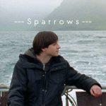 """Plakat """"Sparrows"""" ein Film von Rúnar Rúnarsson"""